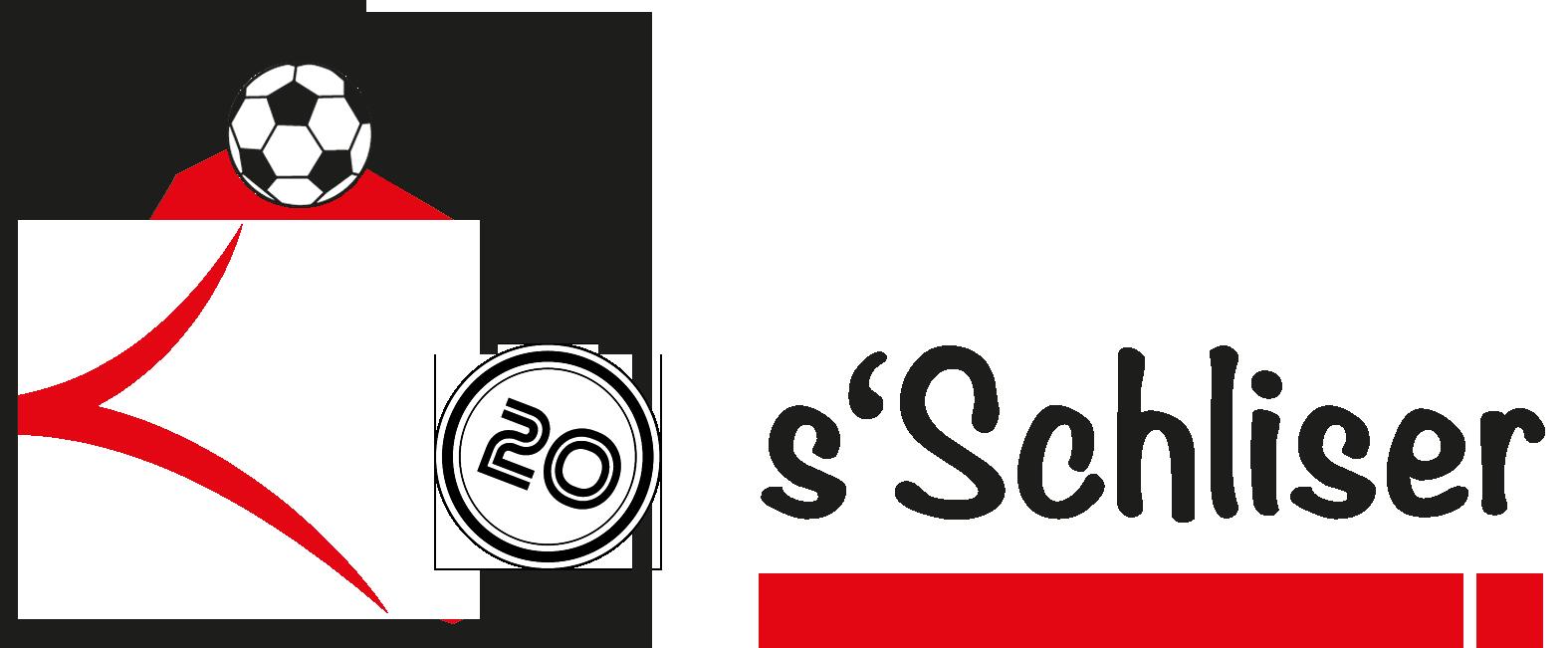 Logo Hallaturnier